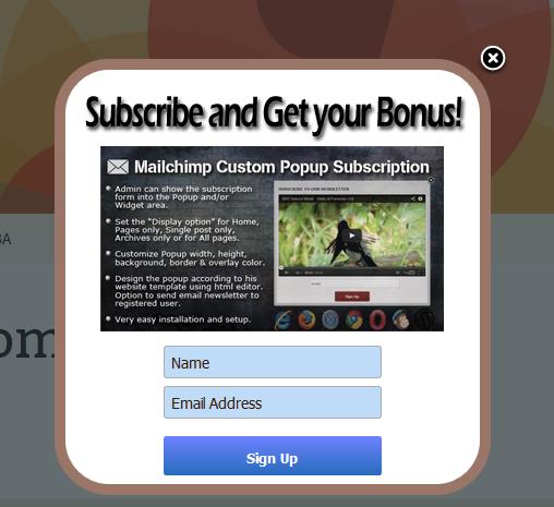 Mailchimp Custom Popup Subscription for wordpress - 13